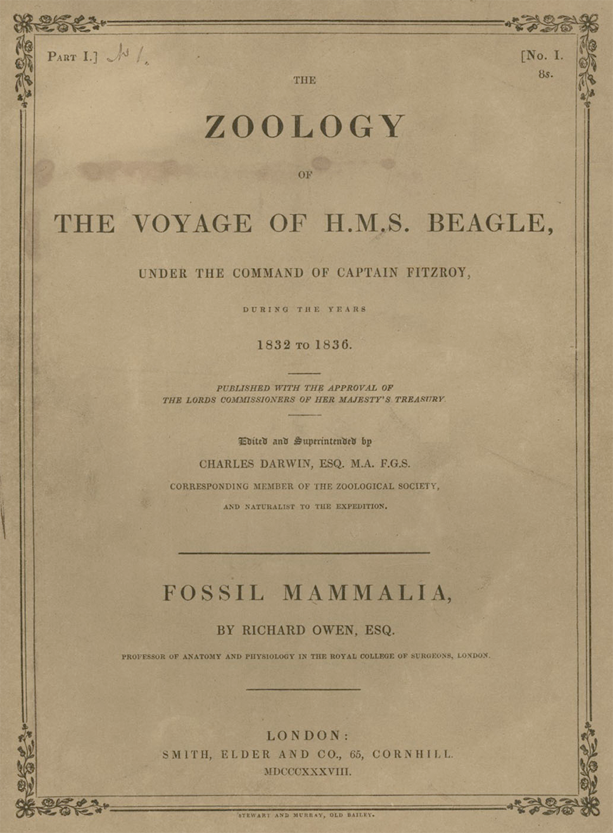 Darwin Zoology of the Voyage of HMS. Beagle Band1 Teil1 1838