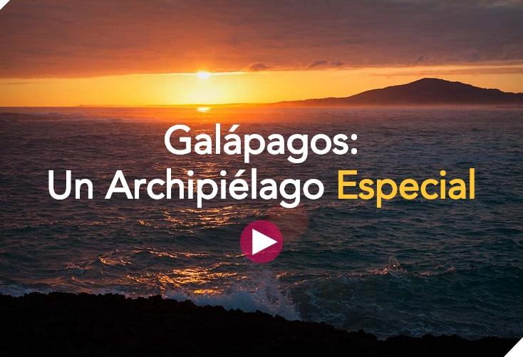 Gráficos de Galápagos: Un Archipielágo Especial