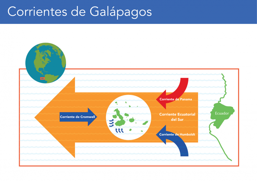 Gráficos de Galápagos: Corrientes marinas de Galápagos (©Lisa Brown)