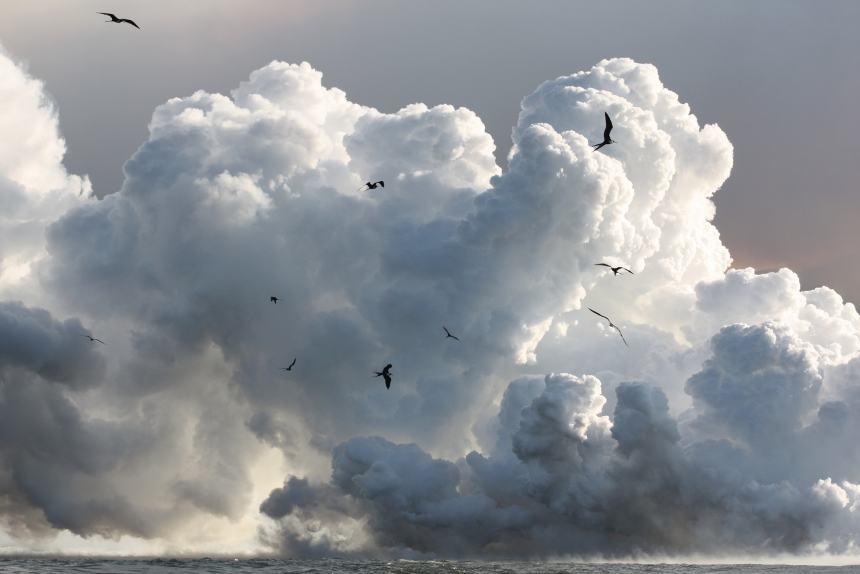 Lugares de Galápagos: Erupción Volcánica © Martin Symonds