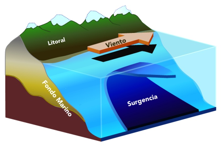 Gráficos de Galápagos: Surgencia