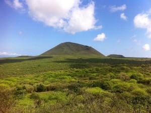 Lugares de Galápagos: Floreana © Igor Starukha
