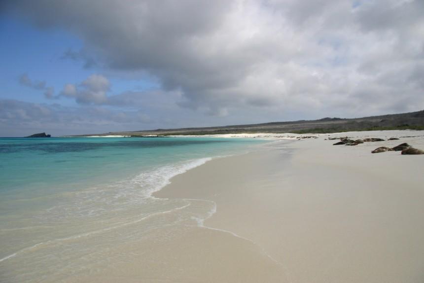 Lugares de Galapagos: Playa © Vanessa Green